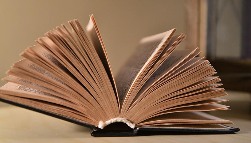 Erlesenes Erforschen: Von der Bibel bis zum Blockbuster Foto: (c) pixabay