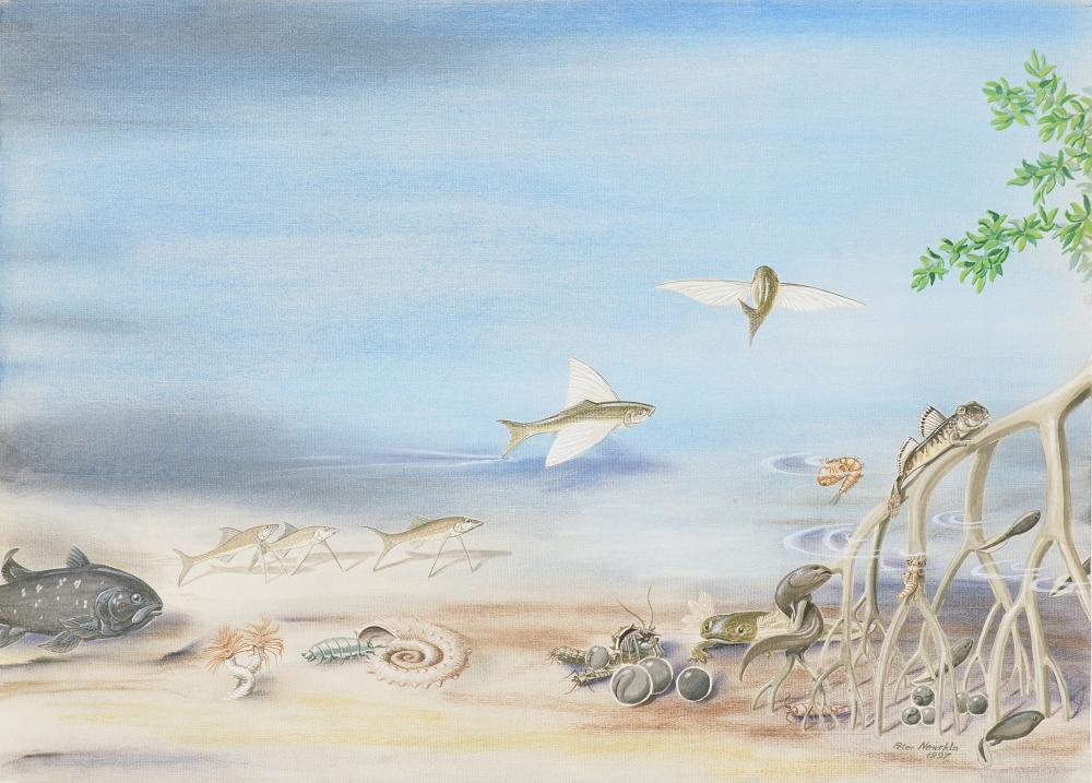 """Bild 6 aus dem Bilderzyklus """"Evolution"""""""